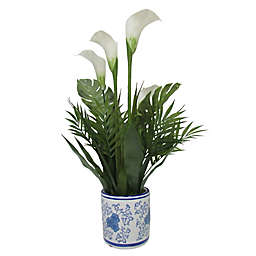 W Home 25-Inch Calla Lily in Round Blue/White Ceramic Pot