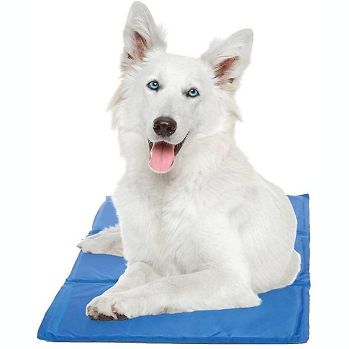 Alternate image 1 for PAWSLIFE® Cooling Pad in Blue