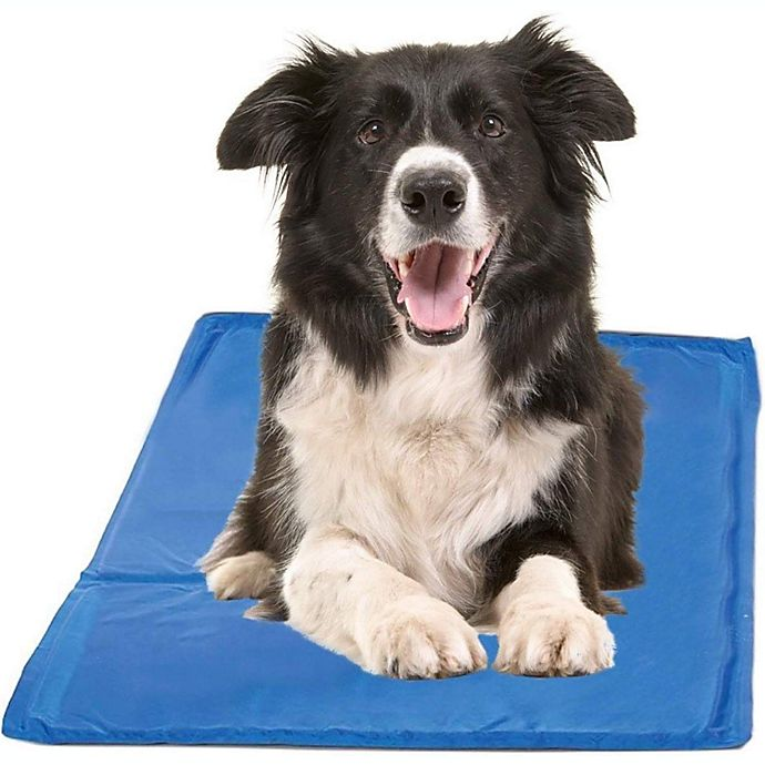 Alternate image 1 for PAWSLIFE® X-Large Cooling Pad in Blue