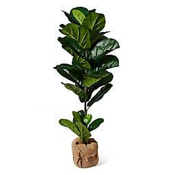 Elements 43-Inch Artificial Fiddlehead Ficus Tree
