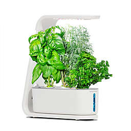 AeroGarden™ Sprout in White