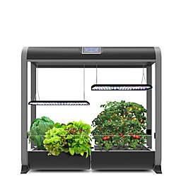 AeroGarden Farm 24Plus in Black