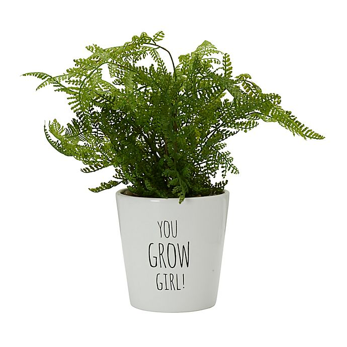 Alternate image 1 for Elements 14-Inch Artificial Air Fern Plant in Ceramic Pot