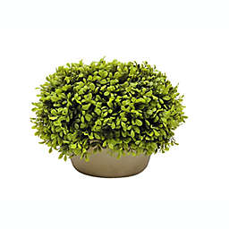Bee & Willow™ Home Pre-Lit Faux Boxwood Ball Topiary