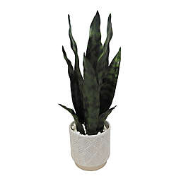 Elements 14-Inch Artificial Snake Plant in Ceramic Pot