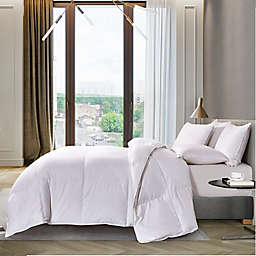 1000-Thread-Count Pima Cotton Down Comforter in White