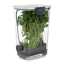 Progressive® Plastic ProKeeper for Herb Storage