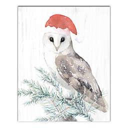 Christmas Owl 16x20 Canvas Wall Art