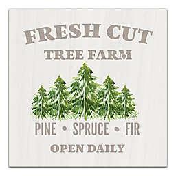 Fresh Cut Tree Farm 16x16 Canvas Wall Art