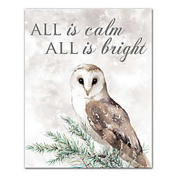 All is Calm and Bright Owl 16x20 Canvas Wall Art