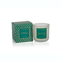 Zodax Eucalyptus & Verbena Medium Frosted Boxed Jar Candle with Gold Rim in Turquoise