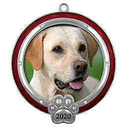 Crystals from Swarovski® Harvey Lewis™ Pet Christmas Ornament
