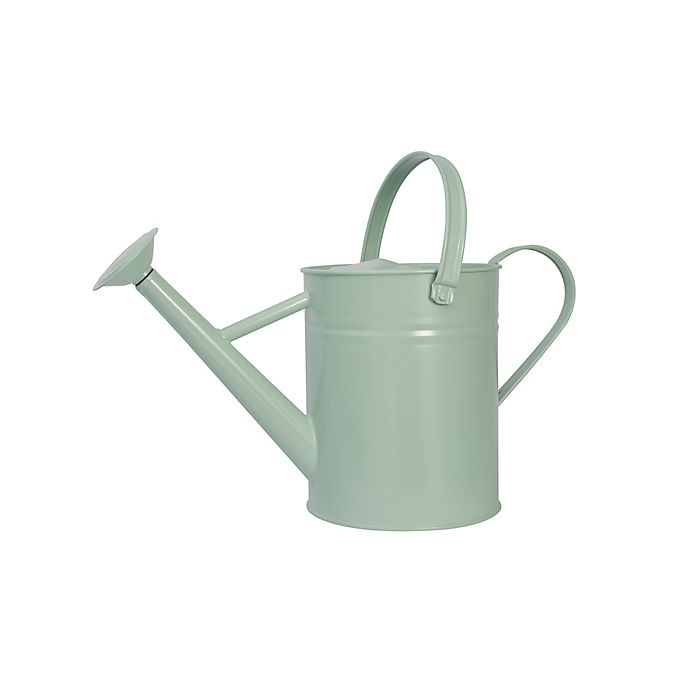 Alternate image 1 for Bee & Willow™ 1-Gallon Metal Watering Can in Celadon