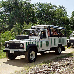 St. Lucia Jeep Tour and Sea Safari by Spur Experiences®
