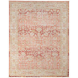 Amer Rugs Cendy Alma Bordered 9' x 13' Area Rug in Pink