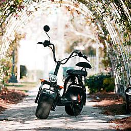 Jacksonville, Florida Jax Rides Classic Tour by Spur Experiences®