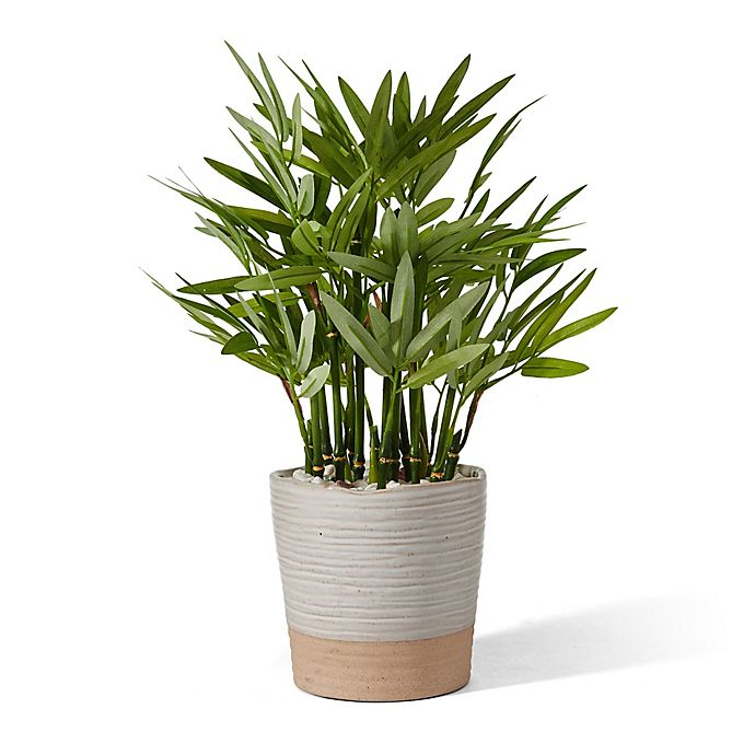 Alternate image 1 for Elements 15-Inch Artificial Bamboo Plant in Ceramic Pot