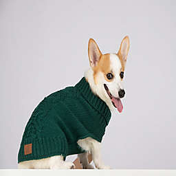 Bee & Willow™ Home Small Cable Knit Dog Sweater in Green