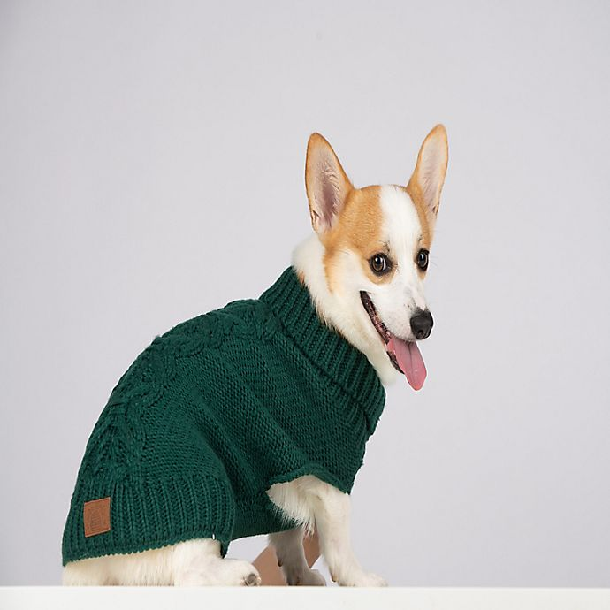Alternate image 1 for Bee & Willow™ Home Extra Large Cable Knit Dog Sweater in Green