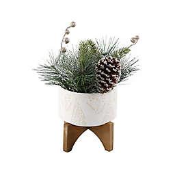 Flora Bunda 11.5-Inch Christmas Mix in Scandi Tree Ceramic Pot