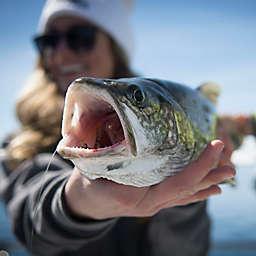 Tahoe, California Tahoe Sport Fishing by Spur Experiences®