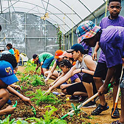 Puerto Rico Organic Farm To Table Dining Workshop by Spur Experiences®