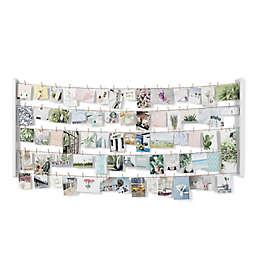 Umbra® Hangit 60-Inch x 26-Inch Photo Display in White