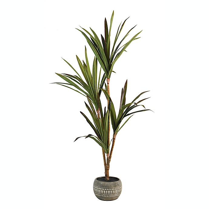 Alternate image 1 for Wild Sage™ 55-Inch Potted Floor Plant