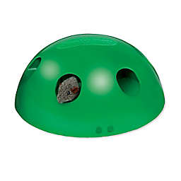 Pets Know Best Pop N' Play Interactive Cat Toy in Green