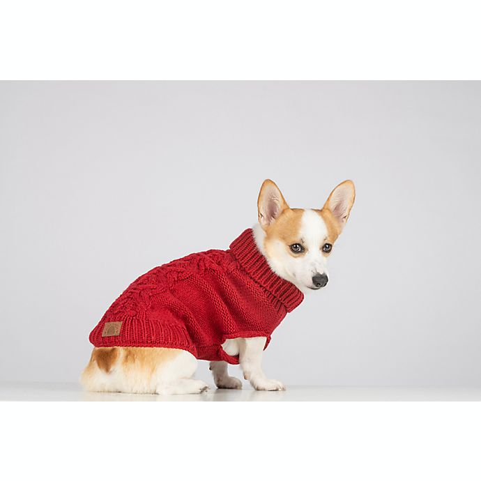 Alternate image 1 for Bee & Willow™ Home Small Cable Knit Dog Sweater in Red