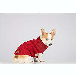 Bee & Willow™ Home Small Cable Knit Dog Sweater in Red