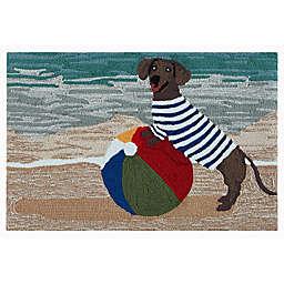 Liora Manné Frontporch Coastal Dog Indoor/Outdoor Floor Mat in Ocean