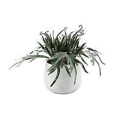 Wild Sage™ 17-Inch Artificial Succulents Potted Plant