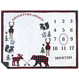 Hudson Baby® Plaid Milestone Blanket in Red/Black