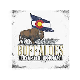University of Colorado State Flag Flying Canvas Wall Art