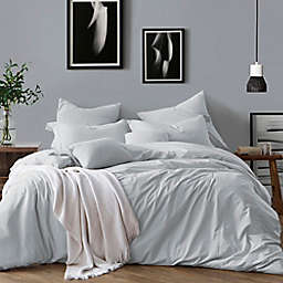 Swift Home Prewashed Yarn-Dyed Cotton 2-Piece Twin Duvet Cover Set in Pale Blue