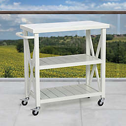 W Home Galvanized Steel Outdoor Cart in White