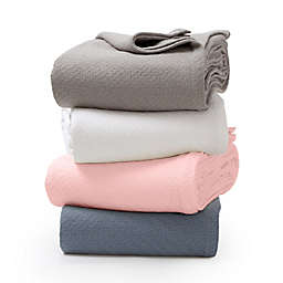 Bee & Willow™ Home Cotton Knit Blanket