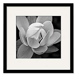 Courtside Market® Gardia 20-Inch Square Framed Wall Art in Black/White