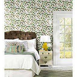 RoomMates® Cat Coquillette Eucalyptus Peel & Stick Wallpaper in Green/White