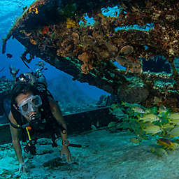 Discover Scuba Diving  by Spur Experiences® (Turks and Caicos)