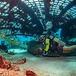 Turks and Caicos Two-Tank Scuba Boat Dive by Spur Experiences®