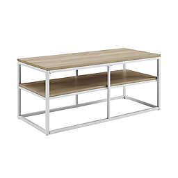 Simply Essential™ Metal Coffee Table in White