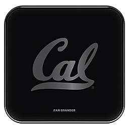 University of California, Berkeley Fast Charging Pad