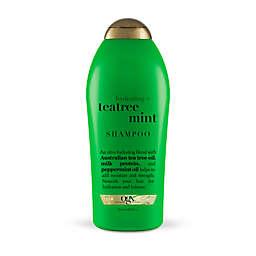 OGX® Hydrating + Teatree Mint Shampoo