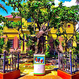 Bob Marley Nine Mile Tour in Jamaica by Spur Experiences®