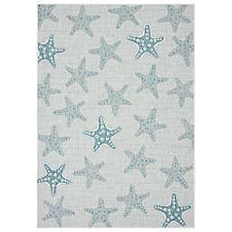 Mercer Street Rugs Starfish Bay Indoor/Outoor Rug in Spa/Multi