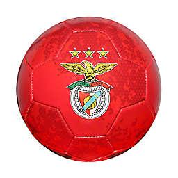 S.L. Benfica Size 5 Regulation Soccer Ball