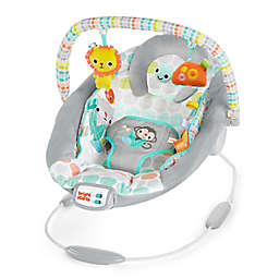 Bright Starts Whimsical Wild Infant Cradle MusicalBouncer