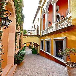 Discover San Miguel De Allende by Spur Experiences®